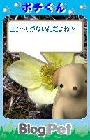 Pochi08062701