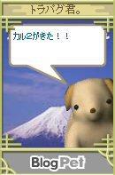 Torakun08070201