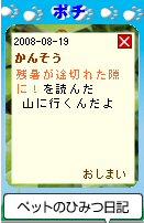 Pochi08081902