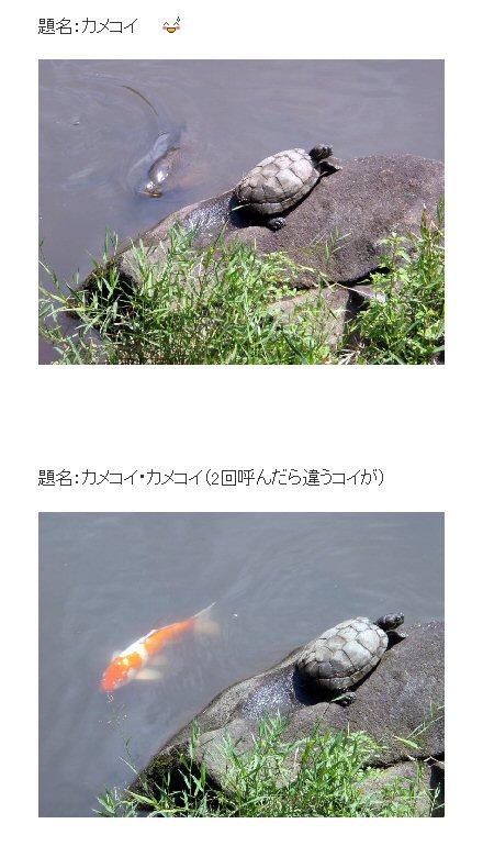 Image5_4