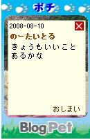 Pochi08081001