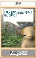 Pochi08083016_2