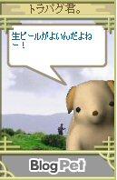 Torakun08080502