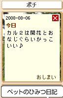 Pochi08080603