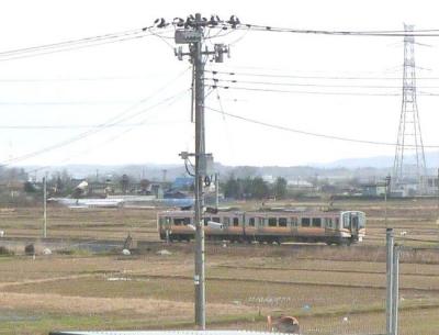P12301972